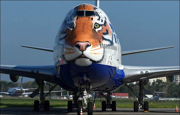TransAero 747