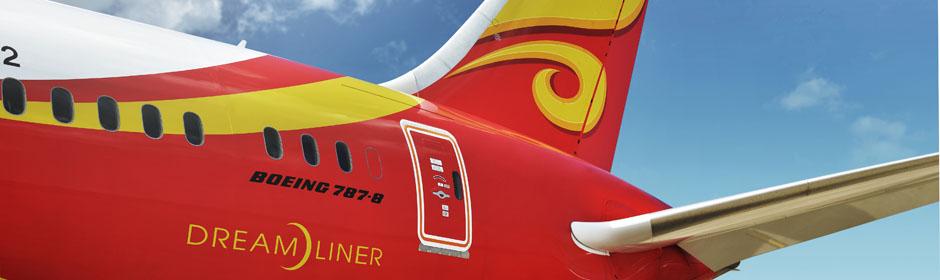 Serán seis los aviones que la aerolínea presentará con diseños alusivos a la película infantil.